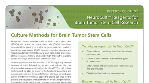 NeuroCult™: Reagents for Brain Tumor Stem Cell Research