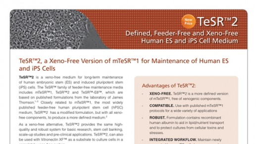 TeSR™2 Defined Feeder-Free and Xeno-Free Human ES and iPS Cell Medium