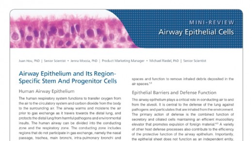 Airway Epithelial Cells