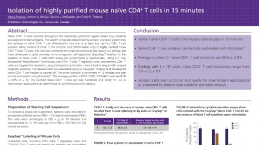 Immunomagnetic Cell Isolation of Highly Purified Mouse Naïve CD4+ T Cells in 15 Minutes