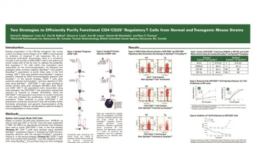 Cell Isolation of Functional CD4+CD25+ Regulatory T Cells from Mouse Strains