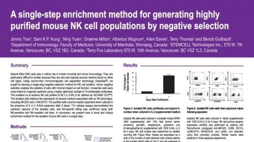 Cell Enrichment to Obtain Mouse NK Cell Populations By Negative Selection