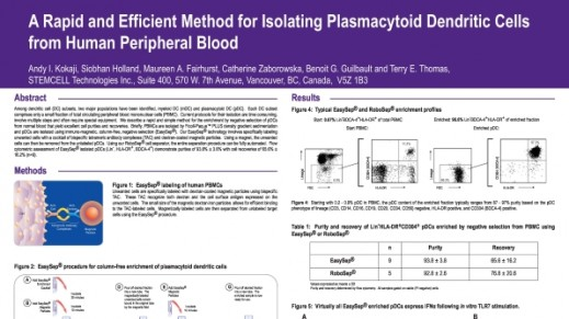 Isolation of Plasmacytoid Dendritic Cells from Peripheral Blood
