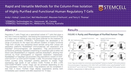 Column-Free Isolation of Highly Purified and Functional Human Regulatory T Cells