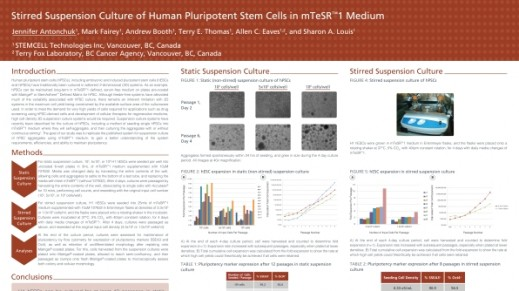 Stirred Suspension Culture of Human Pluripotent Stem Cells in mTeSR™1 Medium