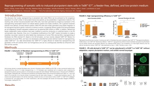 Reprogramming of Somatic Cells to Induced Pluripotent Stem Cells in TeSR™-E7™, a Feeder-Free, Defined, and Low-Protein Medium