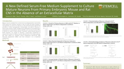 A New Defined Serum-Free Medium Supplement to Culture Mature Neurons from Primary Embryonic Mouse and Rat CNS