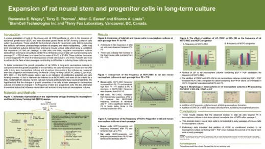 Expansion of Rat Neural Stem and Progenitor Cells in Long-Term Culture