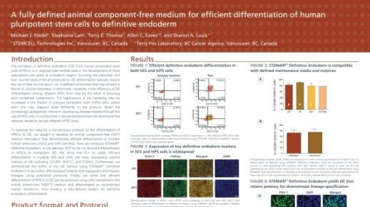 A Fully Defined Animal Component Free Medium for Efficient Differentiation of Human Pluripotent Stem Cells to Definitive Endoderm