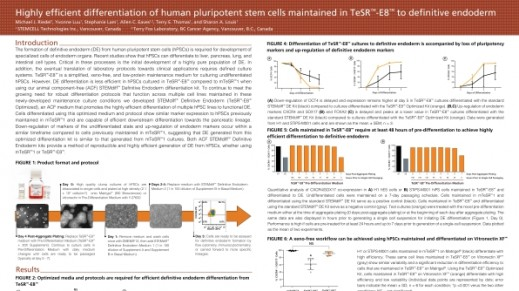 Highly Efficient Differentiation of Human Pluripotent Stem Cells Maintained in TeSR™-E8™ to Definitive Endoderm