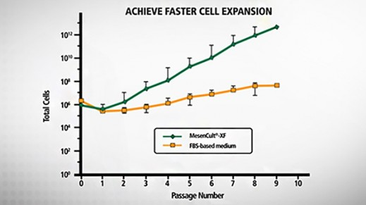 MesenCult™-XF Introduction: A Defined, Xeno-free Medium for Human MSCs