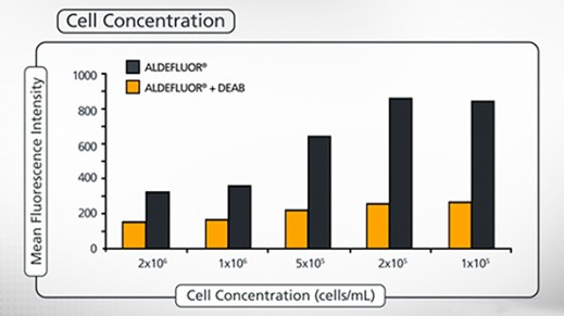 Optimization of ALDEFLUOR™ Protocol