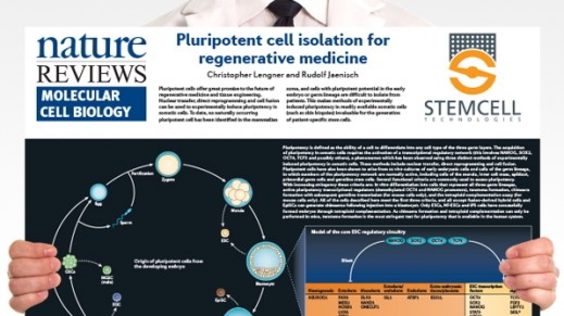 Pluripotent Stem Cell Biology