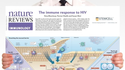 The Immune Response to HIV Poster