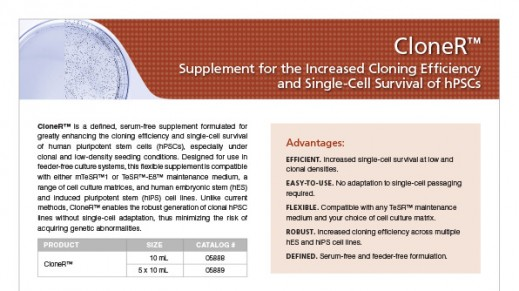 scientific resources cloneracirc132cent supplement for the increased cloning efficiency and single cell survival of hpscs