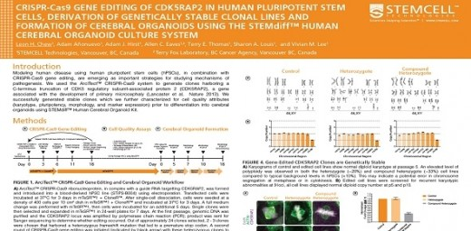 CRISPR-Cas9 Gene Editing Of CDK5RAP2 In Human Pluripotent Stem Cells