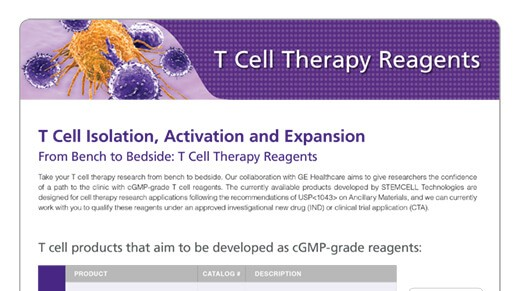 T Cell Reagents for Your Cellular Therapy Research