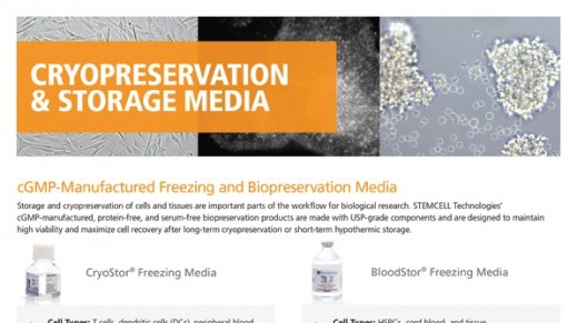 Cryopreservation Media for Stem Cell Research