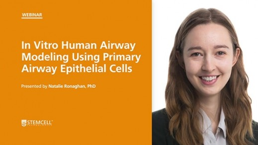 In Vitro Human Airway Modeling Using Primary Airway Epithelial Cells