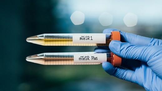 STEMCELL Technologies Launches mTeSR™ Plus