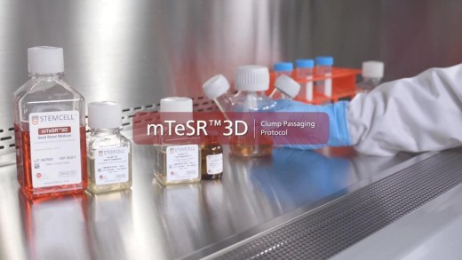 Technical Video: mTeSR™3D Passaging Protocol