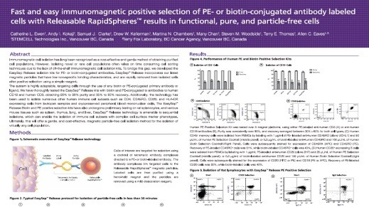 Fast and Easy Immunomagnetic Positive Selection of PE- or Biotin-Conjugated Antibody Labeled Cells with Releasable RapidSpheres™ Results in Functional, Pure and Particle-Free Cells