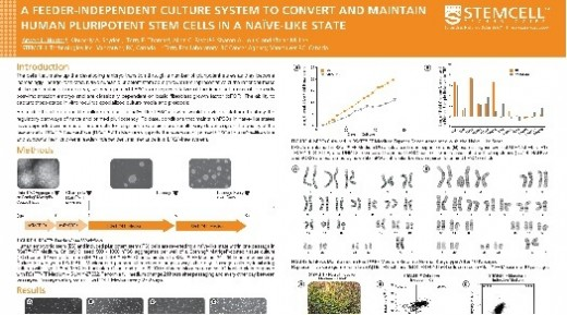 A Feeder-Independent Culture System to Convert and Maintain Human Pluripotent Stem Cells in a Naïve-Like State