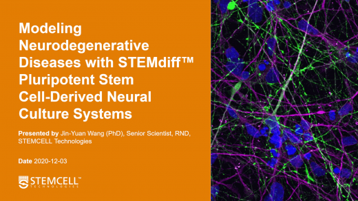 Modeling Neurodegenerative Diseases with STEMdiff™ Pluripotent Stem Cell-Derived Neural Culture Systems