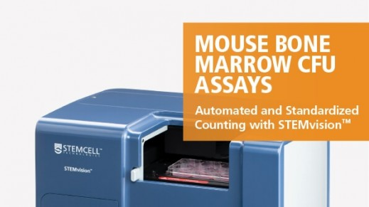 STEMvision™ Automated and Standardized Counting of Mouse Bone Marrow CFU Assays
