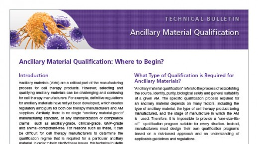 Ancillary Material Qualification