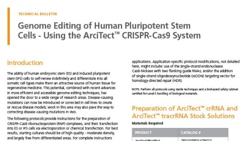 Human Pluripotent Stem Cell Genome Editing Using the ArciTect™ CRISPR-Cas9 System