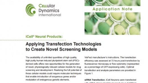 iCell® Neural Products: Applying Transfection Technologies to Create Novel Screening Models