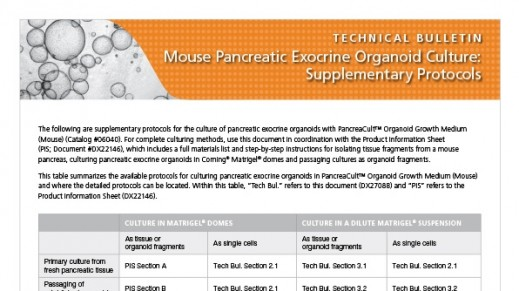 Mouse Pancreatic Exocrine Organoid Culture: Supplementary Protocols