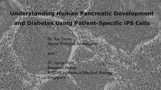 Understanding Pancreatic Development and Diabetes Using Patient-Specific iPS Cells