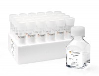 MegaCult™-C Collagen and Medium without Cytokines