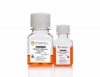 IntestiCult™ Organoid Growth Medium (Human)