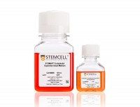 STEMdiff™ Endothelial Expansion Medium Kit