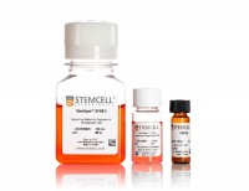 StemSpan™ Leukemic Cell Culture Kit