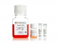StemSpan™ NK Cell Generation Kit