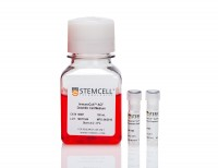 ImmunoCult™ Dendritic Cell Culture Kit