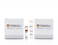 StemSep™ Human Hematopoietic Progenitor Cell Enrichment Kit