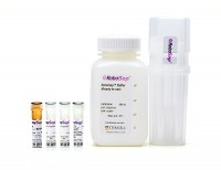 RoboSep™ Mouse CD4 Positive Selection Kit II