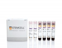 EasySep™ Direct HLA Crossmatch B Cell Isolation Kit
