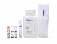 RoboSep™ Mouse Naïve CD4+ T Cell Isolation Kit