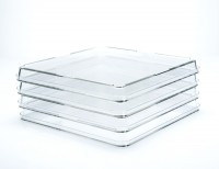 245mm x 245mm Square Treated Tissue Culture Dishes