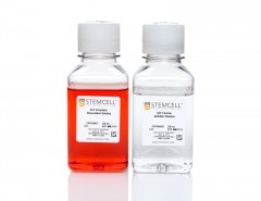 Animal Component-Free Cell Dissociation Kit