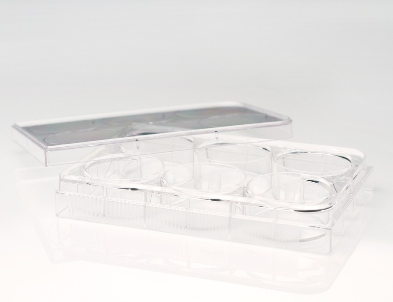6-Well Ultra-Low Adherent Plates For Suspension Cultures