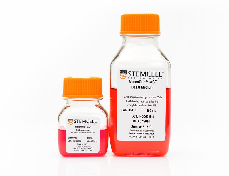 Culture And Cryopreservation Mesenchymal Stem And