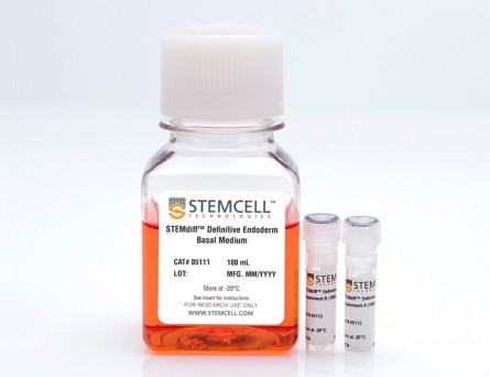 STEMdiff™ Definitive Endoderm Kit