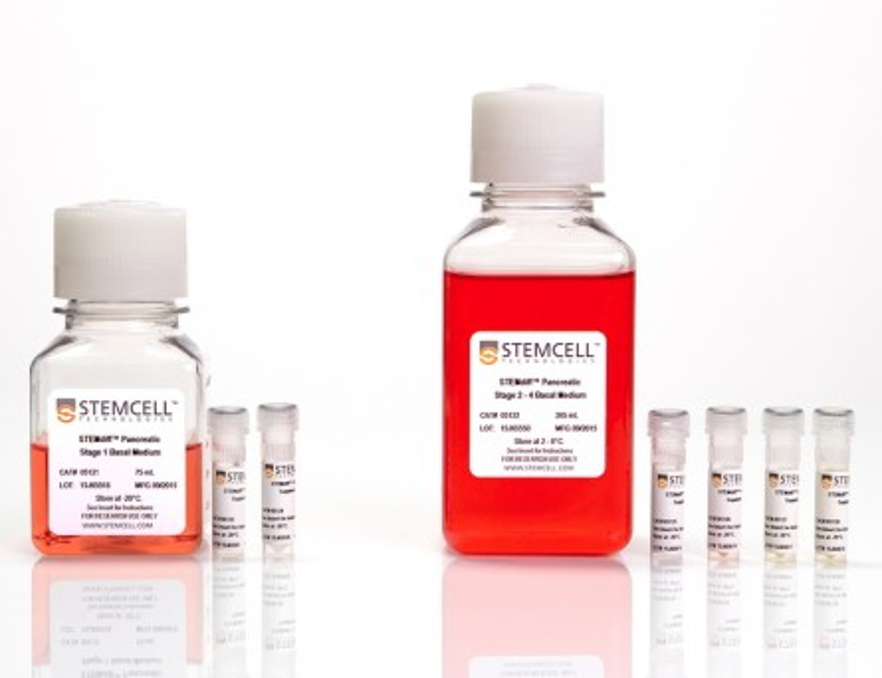 STEMdiff™ Pancreatic Progenitor Kit